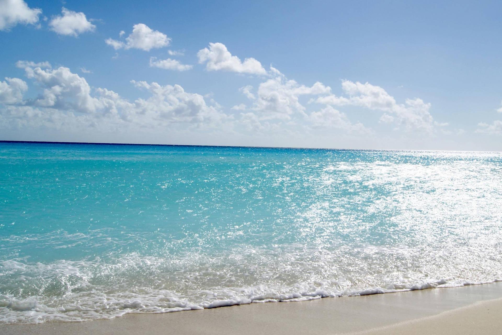 Beach medusa 146 cervia ristorante di pesce a cervia - Bagno palm beach pinarella ...